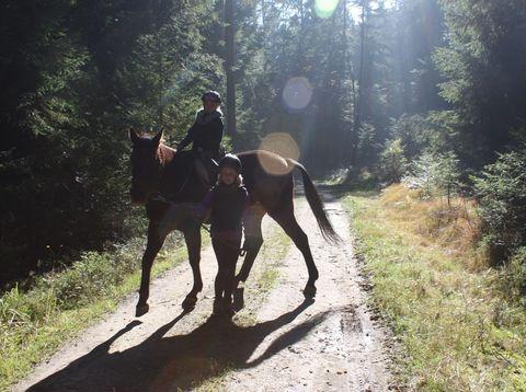 Urlaub in Neustift - Familie Rauscher - reiten
