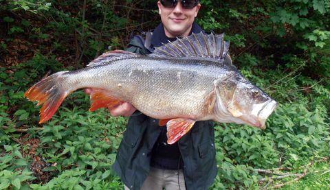 Fischgewässer am Ranna-Stausee