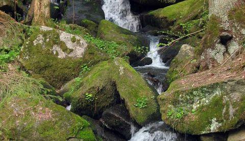 Naturschutzgebiet Rannatal