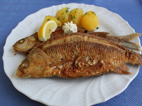 Urlaub in Neustift - Gasthof Pension Luger - Fischspezialitäten