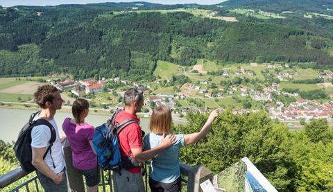 Donaublick Penzenstein nahe dem Pühretsteig